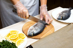 Cooked fish sea bream fish. Royalty Free Stock Photos