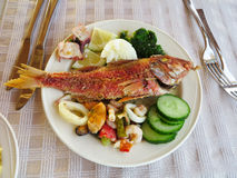 Cooked fish and seafood- mussel squid cucumber Royalty Free Stock Image