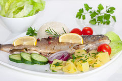 Cooked fish with vegetables, herbs and lemon. Baked trout with potato, cherry tomatoes and green salad Royalty Free Stock Photography