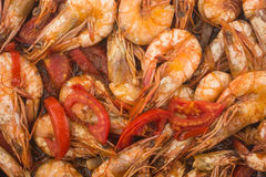 Cooked Fresh Shrimp with Tomato and Onions Royalty Free Stock Image