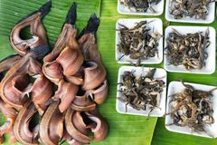 Cooked frogs and kipper. Cooked frogs and fresh kipper in a tropical asian market in Thailand Stock Photo