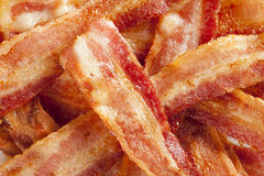 Cooked Greasy Bacon Stock Image