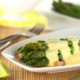 Cooked Green Asparagus with Hollandaise Sauce Stock Images