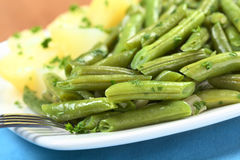 Cooked Green Beans Royalty Free Stock Image