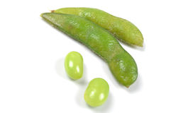 Green soy bean. Cooked green soy bean on white background Stock Images