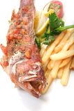 Cooked grouper fish royalty free stock image
