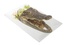 Cooked head of crocodile Royalty Free Stock Photos