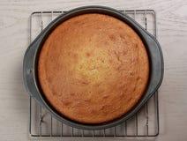 Cooked homemade cake Stock Photo