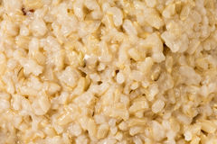 Cooked integral rice Stock Photo