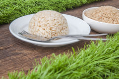 Cooked jasmine brown rice Royalty Free Stock Photography