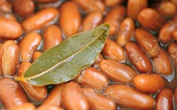 Cooked Kidney Beans with Bay Leaf Stock Images