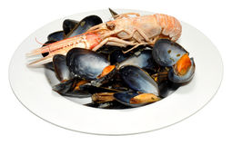 Cooked Langoustine And Mussels Stock Photos