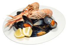 Cooked Langoustine And Mussels Royalty Free Stock Image