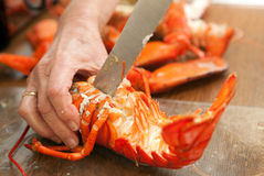 Cooked lobster Royalty Free Stock Photo