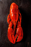 Cooked lobster on black slate table very red Stock Photo