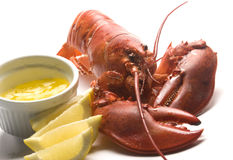 Cooked lobster with butter and lemon wedges Stock Images