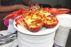 Preparing lobster with melted cheese on a white plate Stock Images