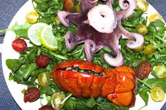 Cooked lobster and octopus with salad royalty free stock photo