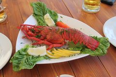 Cooked lobster on a serving plate royalty free stock photography