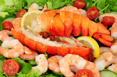 Cooked Lobster Tails With Fresh Salad Royalty Free Stock Images