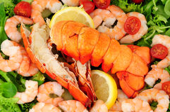 Cooked Lobster Tails With Fresh Salad Stock Images