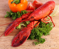 Cooked lobster Royalty Free Stock Photos