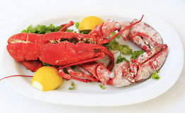 Cooked lobster on a white plate Royalty Free Stock Photography