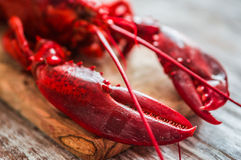 Cooked lobster on wooden background Royalty Free Stock Images
