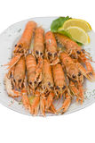 Cooked lobsters. Big plate with cooked langouste facing the camera. Close view Royalty Free Stock Image