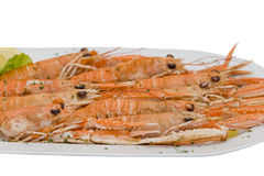 Cooked lobsters. Big plate with cooked langouste. Close view Stock Photos
