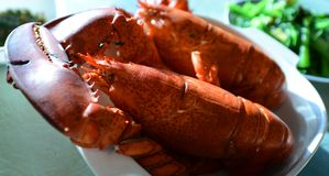 Cooked lobsters Royalty Free Stock Photography