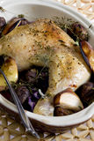 Cooked meal. Chicken with chestnuts on wine Royalty Free Stock Photos