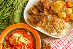 Cooked meal example with tomato salad on the side. Stock Photography