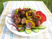 Cooked meat with vegetables barbecue Stock Images