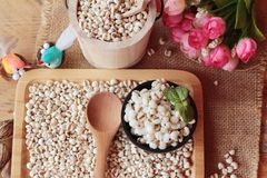 Cooked millet seeds and dried millet seeds. Stock Photos