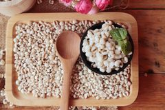 Cooked millet seeds and dried millet seeds. Stock Photography