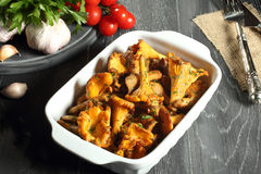 Cooked mushroom chanterelles Royalty Free Stock Photos