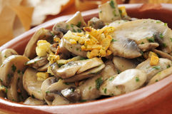 Cooked mushrooms with garlic and parsley Stock Photography