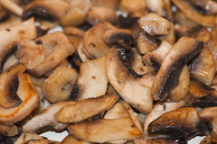 cooked mushrooms Royalty Free Stock Photos