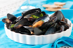 Cooked mussel Royalty Free Stock Images