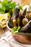 Cooked mussel with herbs Royalty Free Stock Photo