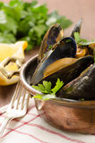 Cooked mussel with herbs Stock Photo