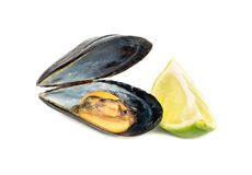 Cooked mussel and lime Stock Photo
