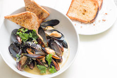Cooked mussels in a with bowl Stock Image