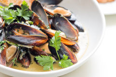 Cooked mussels in a with bowl Stock Photos