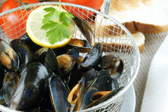 Cooked mussels in a colander Stock Photos