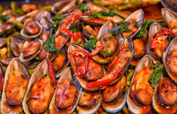 Cooked mussels on the counter, Stock Photography