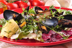 Cooked mussels with garlic butter sauce Stock Photography
