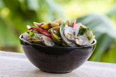 Cooked mussels with green leaves and red pepper in a black plate royalty free stock images