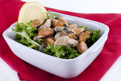Cooked mussels with lemon Royalty Free Stock Photos